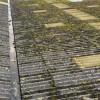 Démoussage de toiture d'usine thumbnail