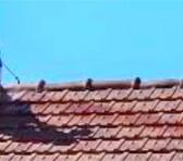 La toiture : les matériaux compatibles avec un toit en pente thumbnail